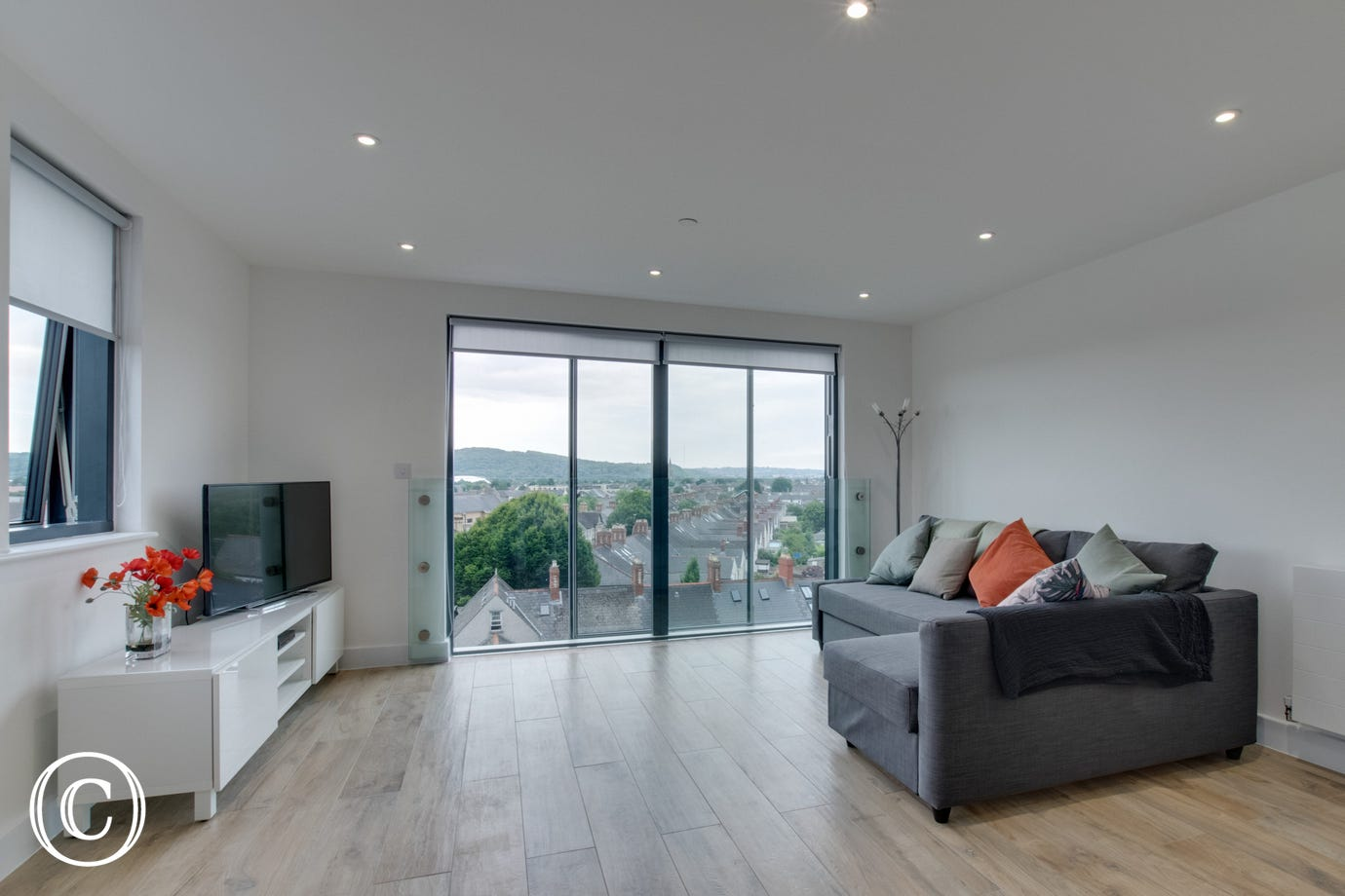 Pen Dinas Cardiff Apartment -