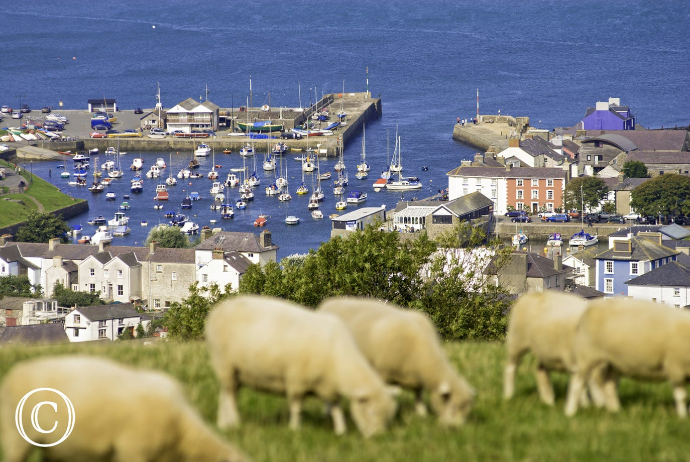 The beautiful harbour town of Aberaeron is just 8 miles away.
