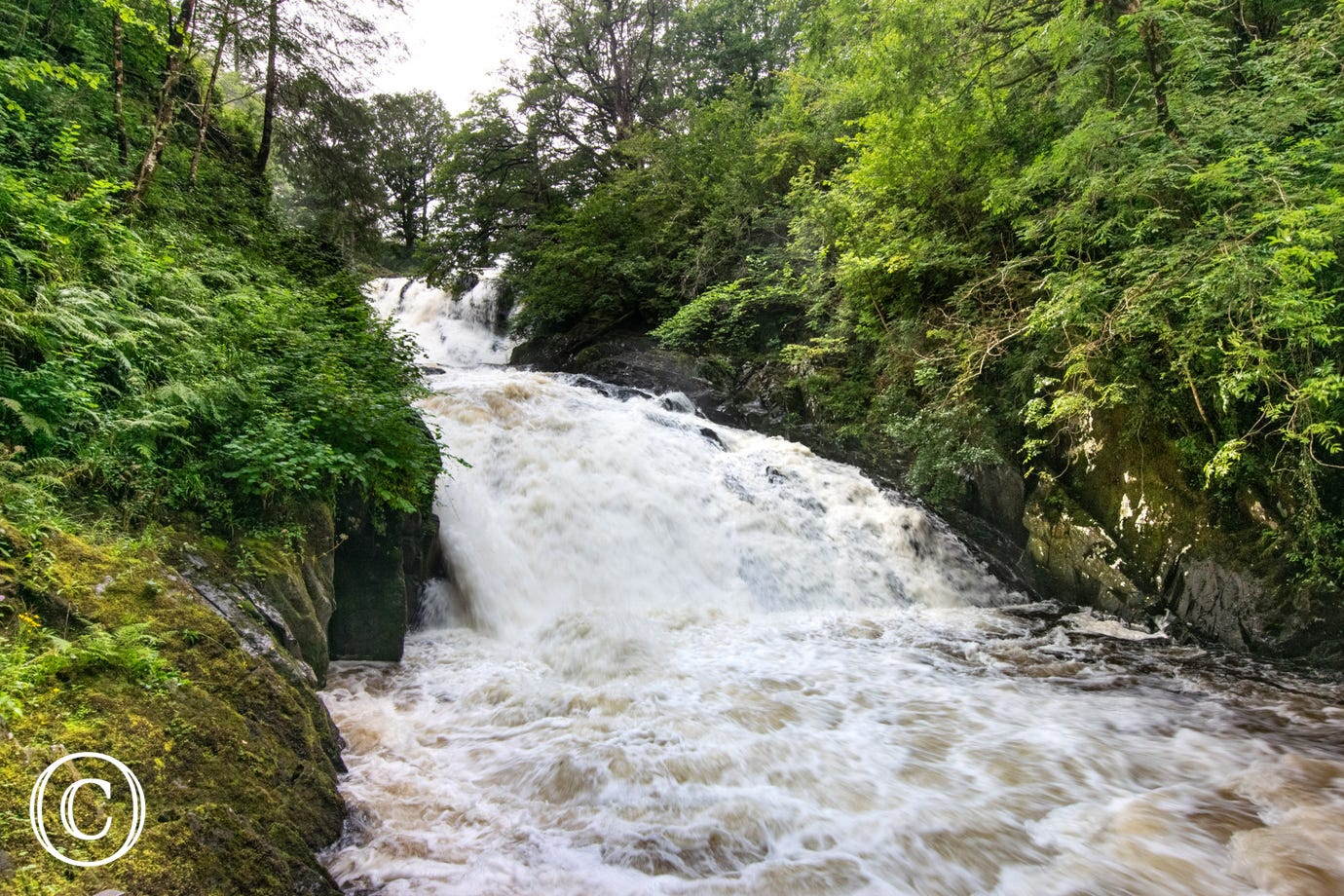 Follow a footpath from Betws y Coed to Swallow Falls (Rhaeadr Ewynnol)