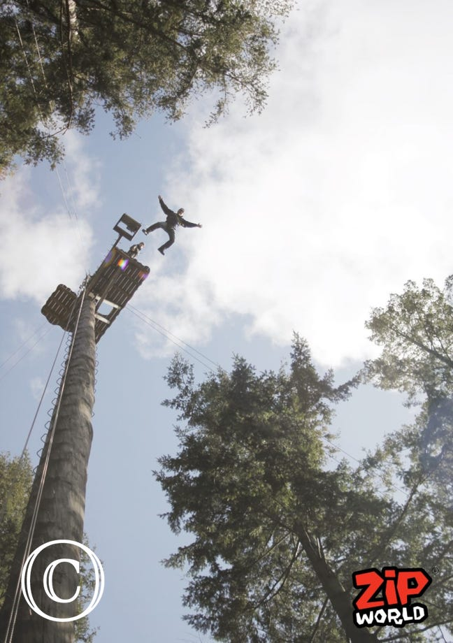 The Plummet at Zip World Fforest, Betws y Coed