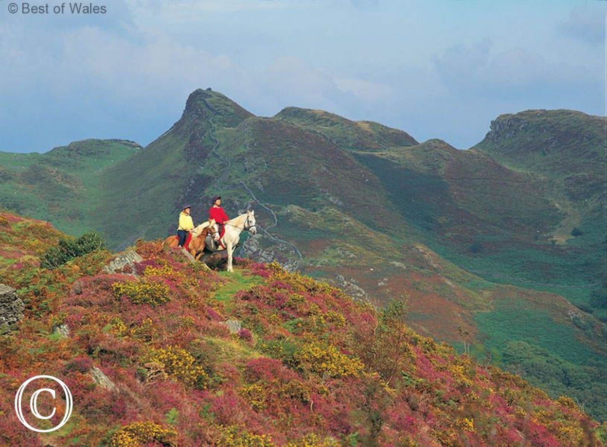 Horse-riding - 8 miles from your self catering Tywyn cottage