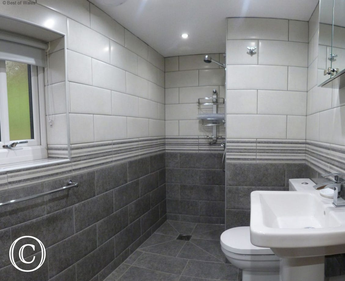 Adjoining en-suite bathroom with walk in shower, wc and basin