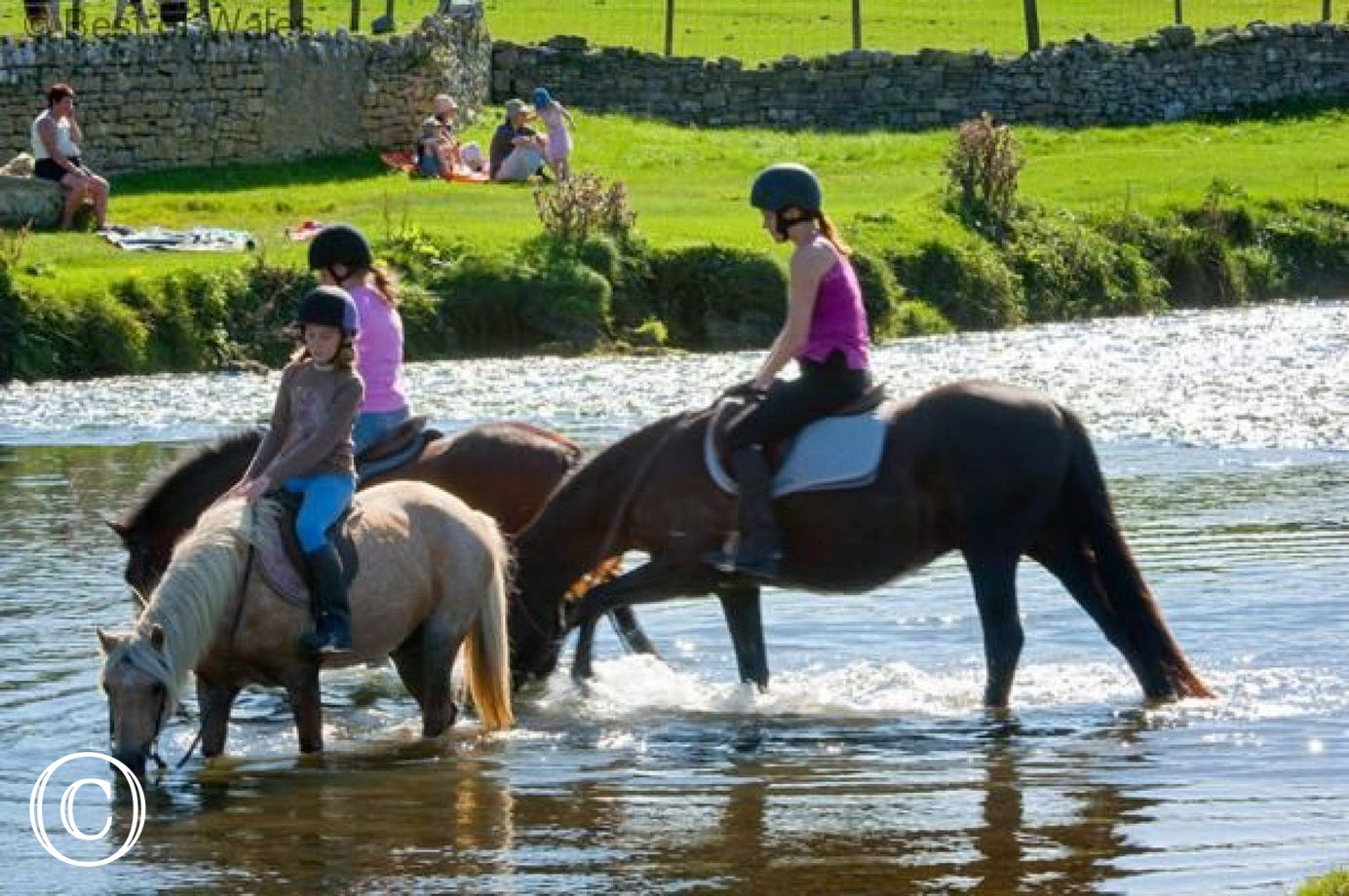 Ogmore Farm Horse Riding Centre, 8 miles from your cottage