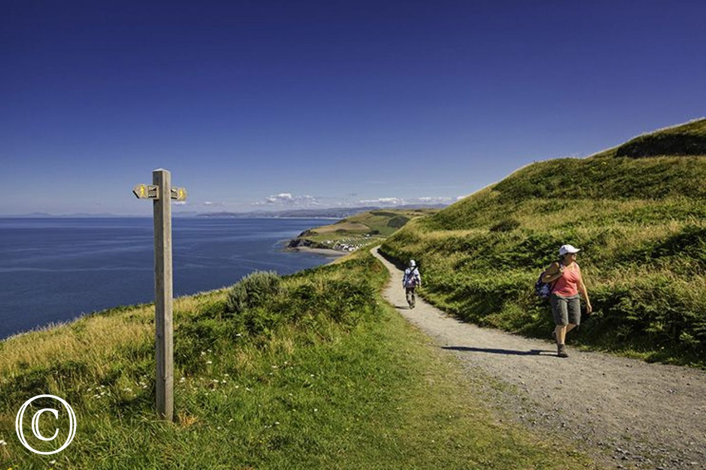 Follow the Wales Coastal Path north or south to Aberystwyth...