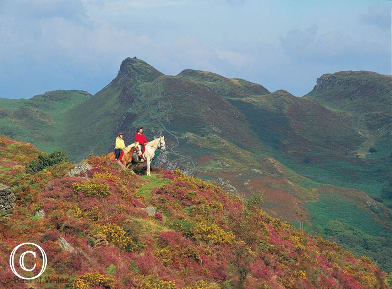 Horse-riding - 10 miles from your Tywyn self catering accommodation