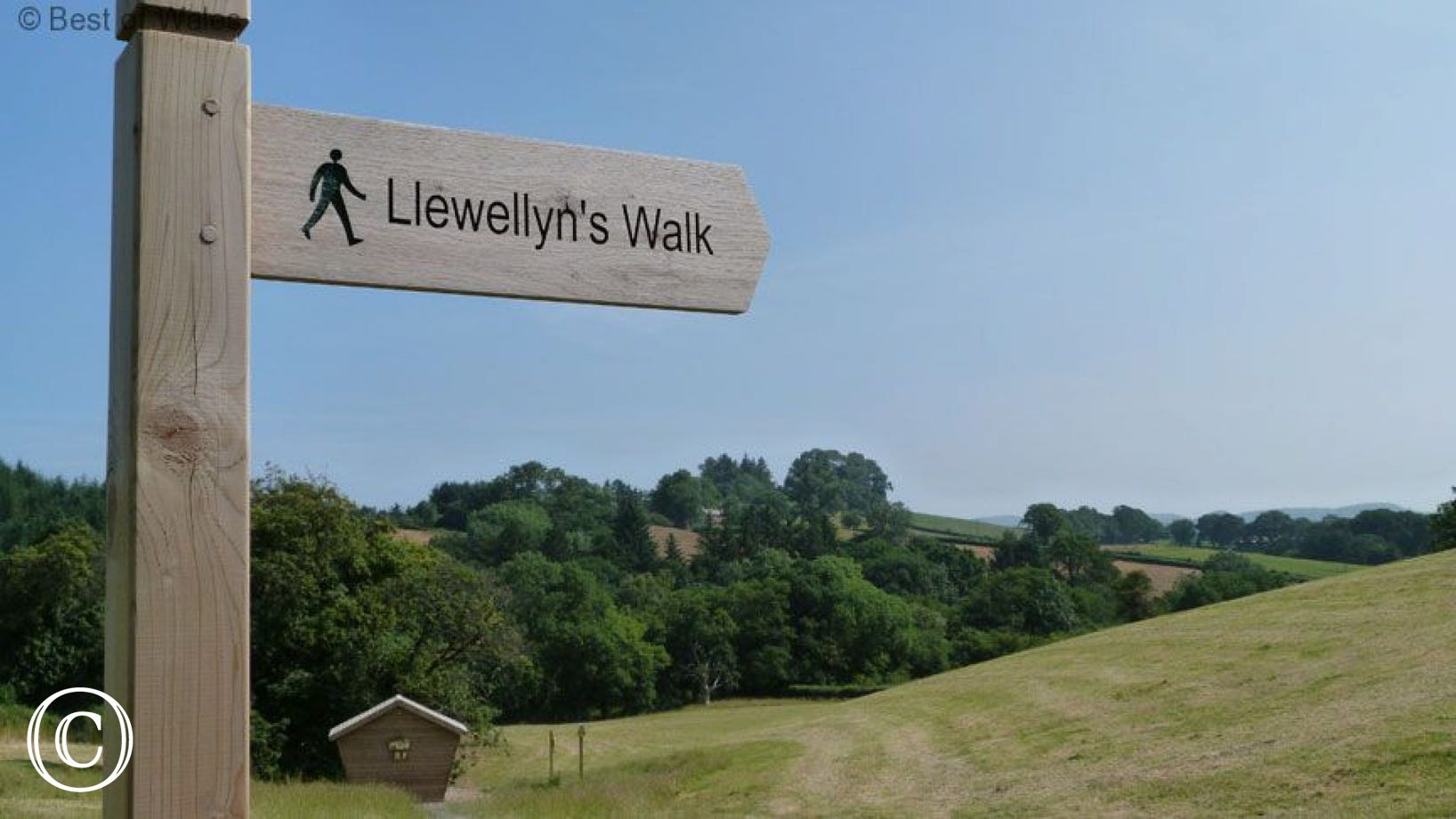 Many walks available directly from the cottage