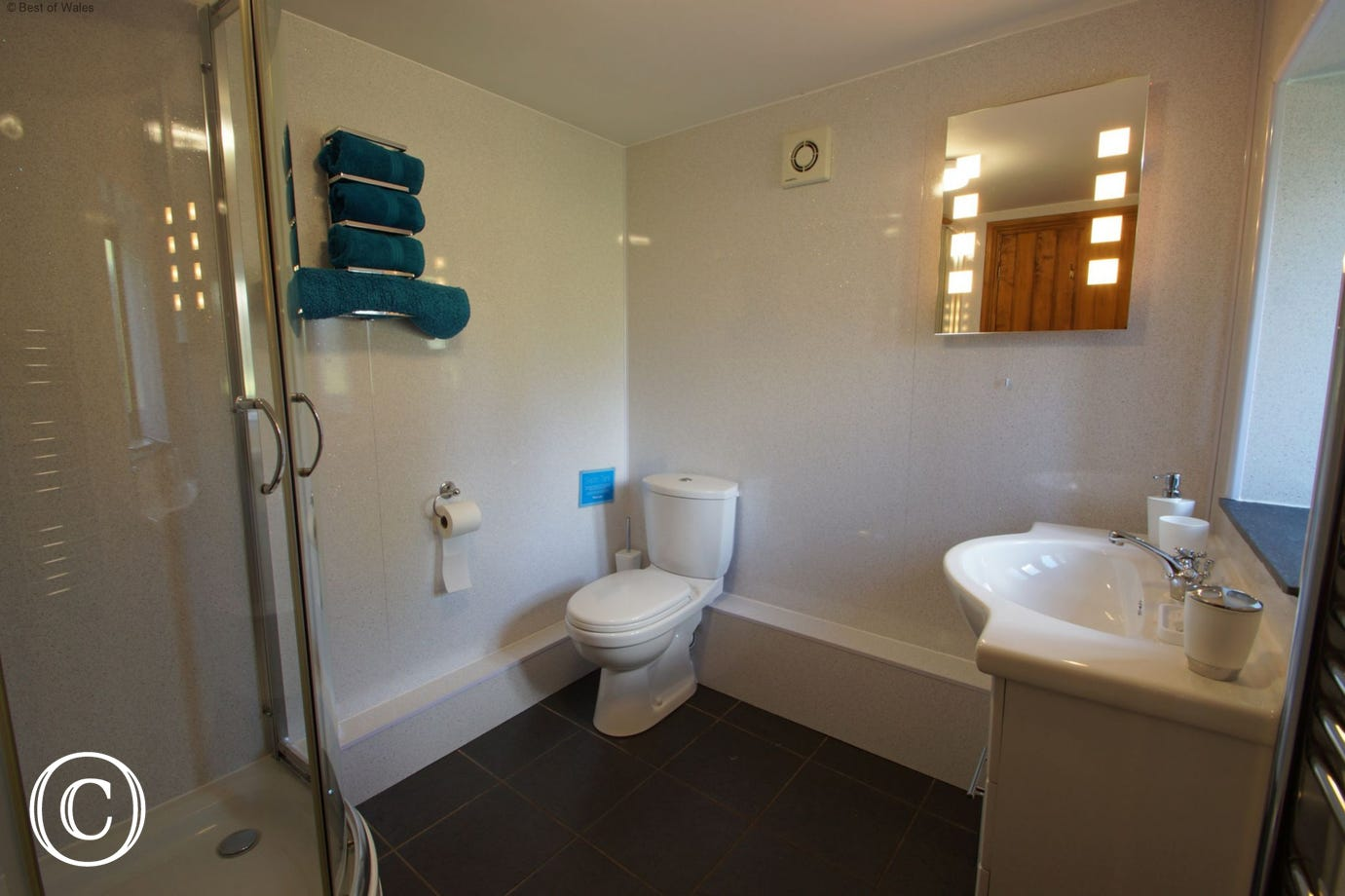 Shower room includes vanity sink unit, shower, toilet and towel rail.