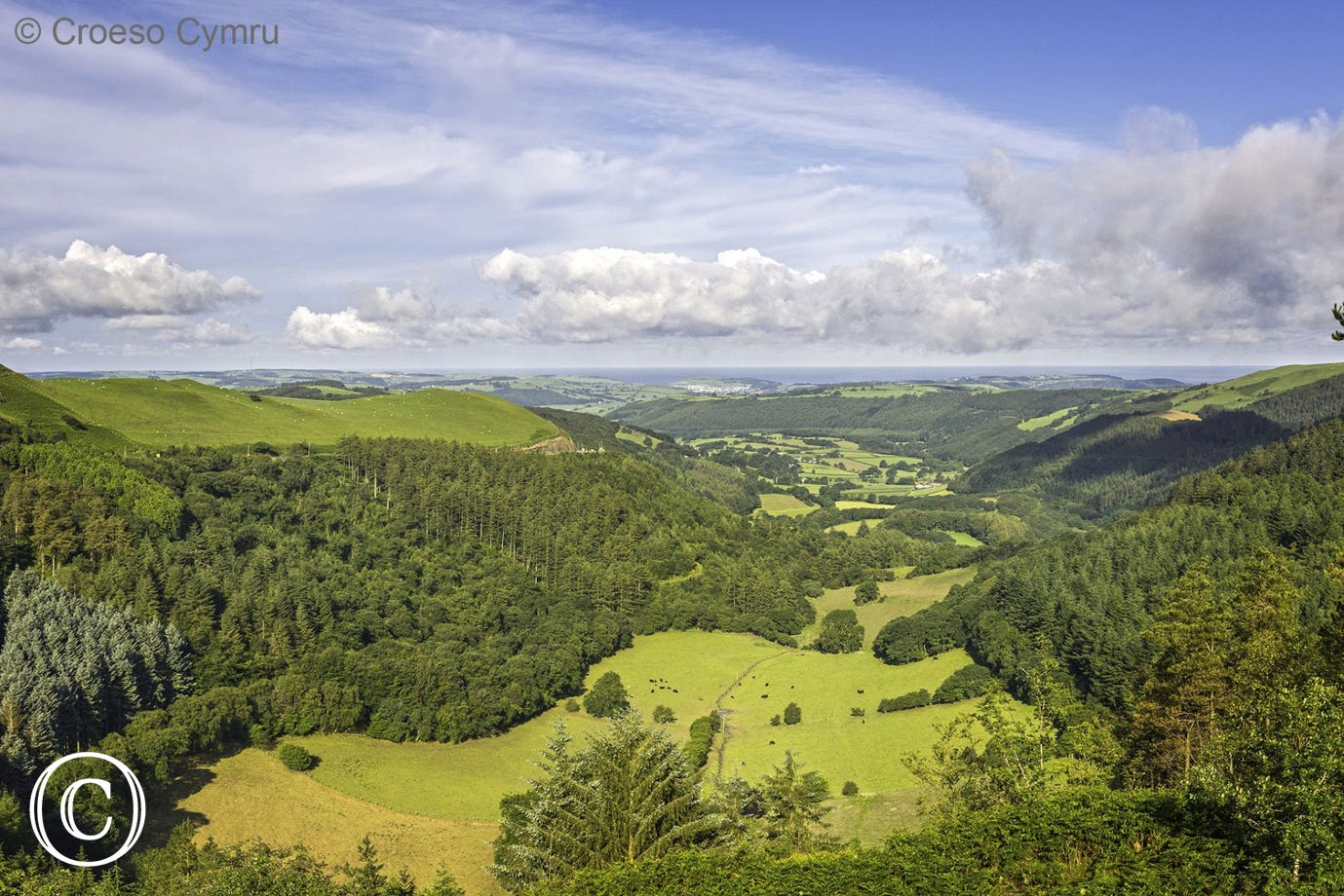View down Cwm Melindwr towards coast from forest walk at Bwlch Nant yr Arian