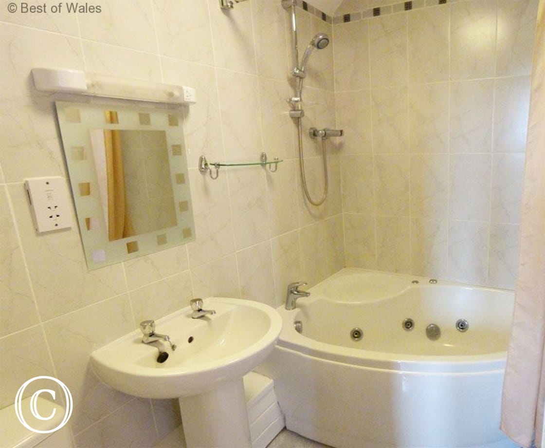 Aberystwyth Apartment  -  Ensuite with Jet Bath and shower